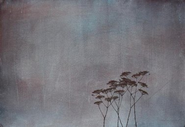 Sateella. n. 70 x 100 cm. Vesiväri ja muste paperille. 2009.